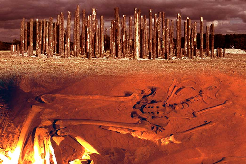 Skeletal remains and recreation of a prehistoric timber circle