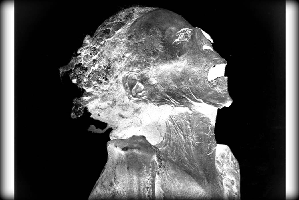 "Close-up view of the ""Screaming Mummy"" with its horrific expression. It was discovered by Émile Brugsch in the Deir el-Bahri (DB320) cache in 1881; design by Anand Balaji (Photo credit: G. Elliot Smith); Deriv."