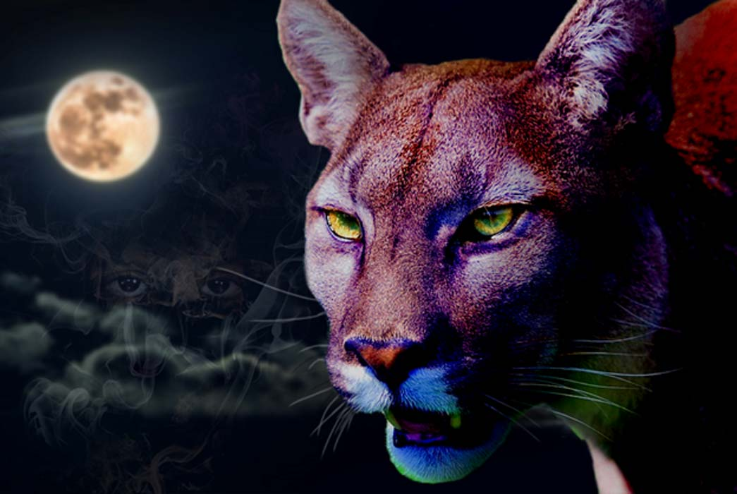 A Puma in the night (Public Domain); with ancestor spirits