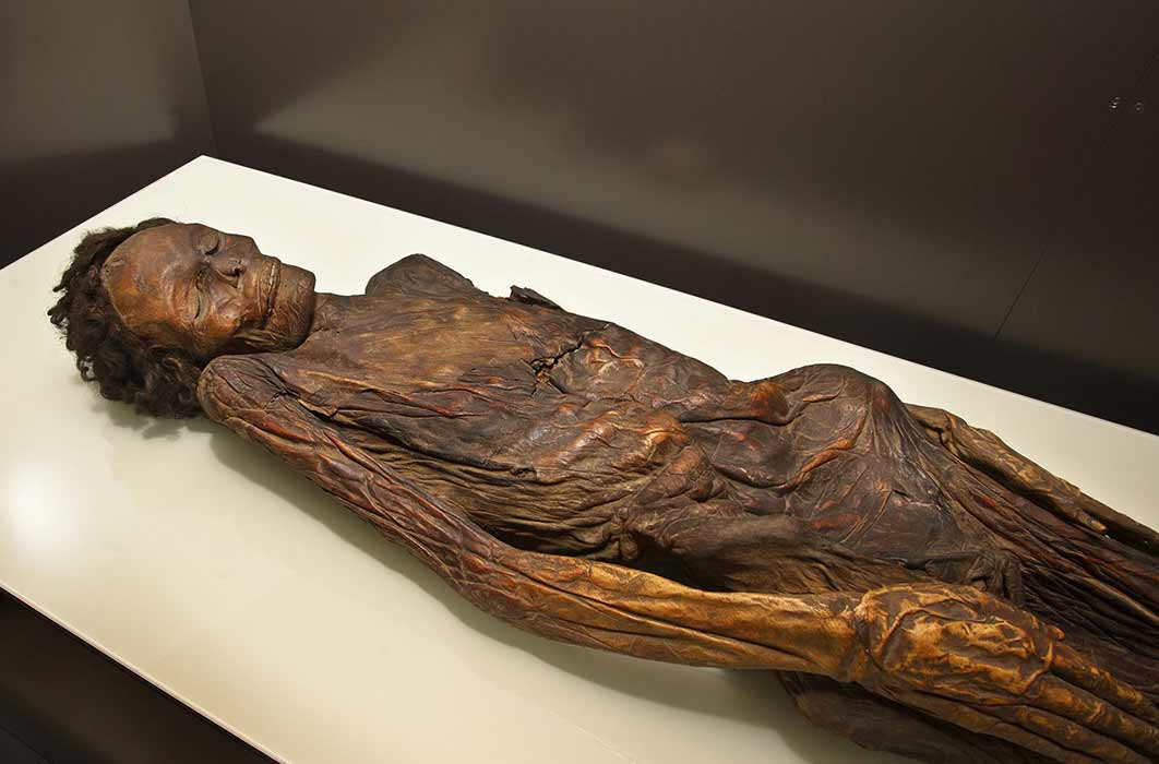 The Guanche mummy from Barranco de Herques belonged to an adult male aged around 35-40 years old.