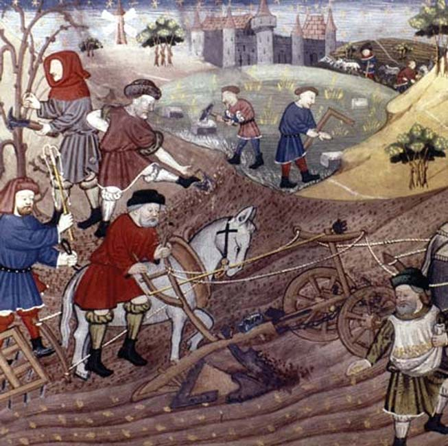Medieval farming - manuscript depiction