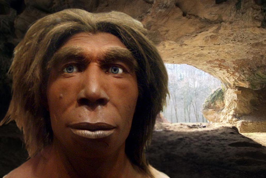 Deriv;Reconstruction of a Neanderthal, Museum für Naturkunde, Berlin, Germany), Vindija cave near Varazdin in Croatia