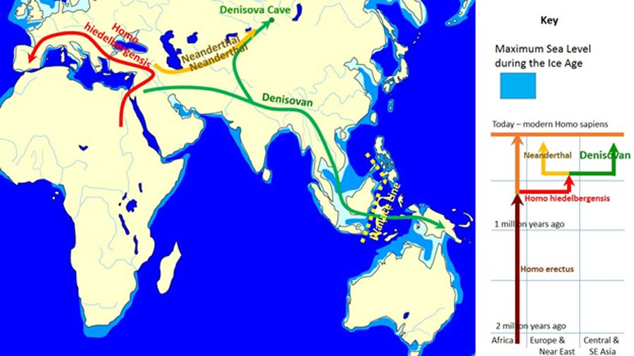 Spread and Evolution of Denisovans (CC BY-SA 3.0)