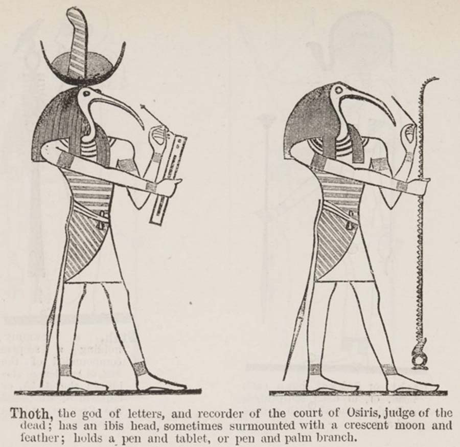 Thoth (in Illustrated List of the principal Egyptian Divinities) (1888) (CC BY-SA 2.5)