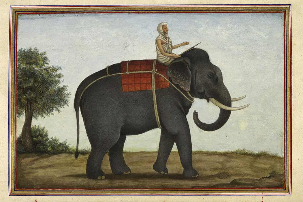 An image of the elephant keeper in India riding his elephant from Tashrih al-aqvam (1825).