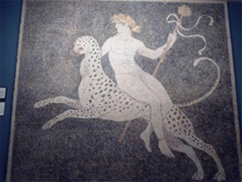 Dionysus riding a panther, mosaic floor in the 'House of Dionysus' at Pella. (late fourth century BC) Pella Archaeological Museum (CC BY-SA 2.0)