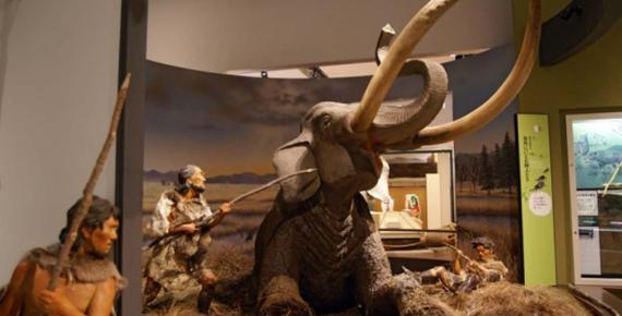 Mammoth hunt, Hyogo Prefectural Museum of Archaeology, Japan (CC BY-SA 2.5)