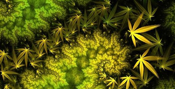 Fractal Cannabis Marijuana Mobius Dragon