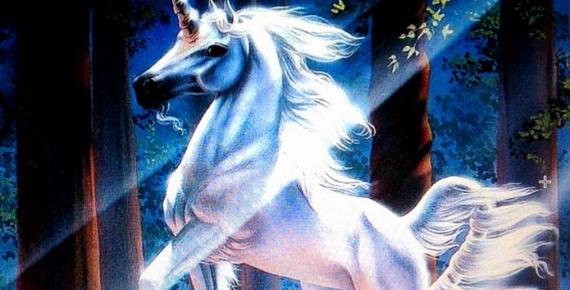 The magical unicorn, legend around the world.